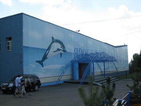 дельфинарий в Ярославле