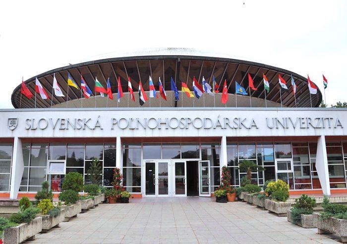 Университет в Словакии