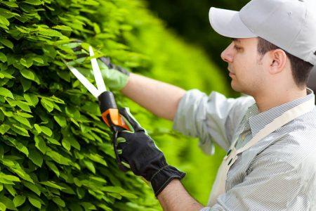 садовник в США