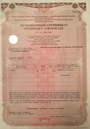 ветеринарный сертификат для провоза собаки в Финляндию