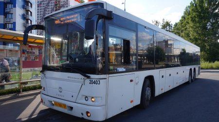 автобусы № 441-Экспресс