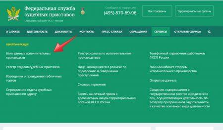 раздел «Банк данных исполнительных делопроизводств»