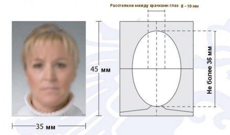 фото на польскую визу
