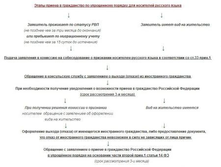 Схема получения гражданства России