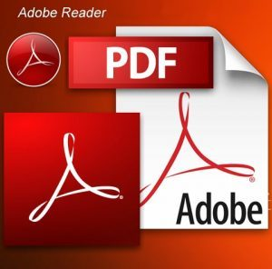 Adobe Acrobat Reader 7.0.