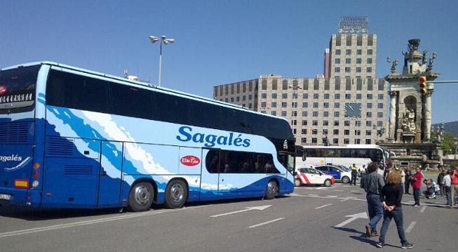Sagales