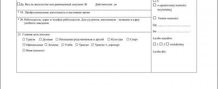П. 21 в заявлении на рабочую визу