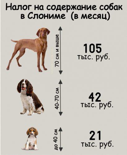 Налог на владение собакой