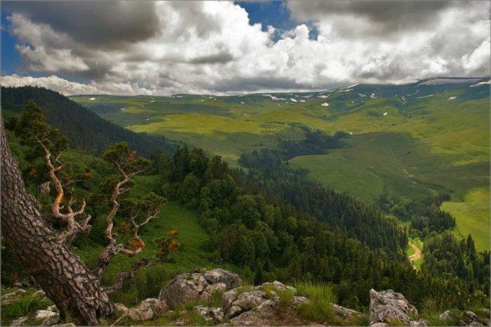 Красота Юга России
