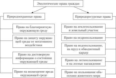 Экологические права граждан РФ