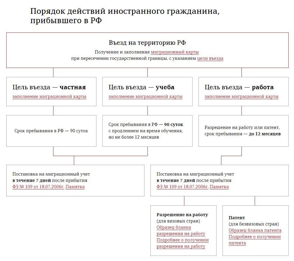 Порядок действия иностранного гражданина прибывшего в РФ