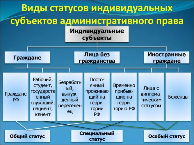 Порядок въезда и выезда иностранных граждан в РФ