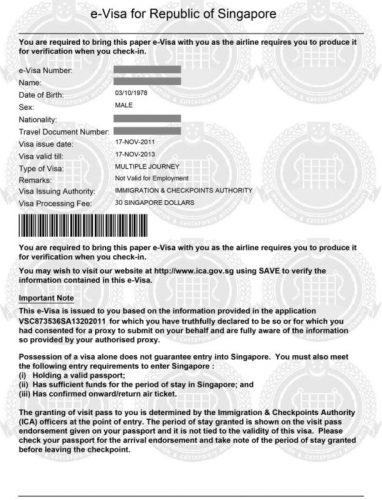 Бланк электронной визы в Сингапур