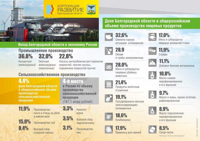 Вклад Белгородской области в экономику России