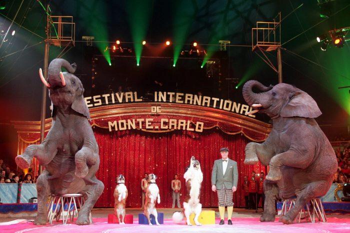 Цирк в Монте -Карло