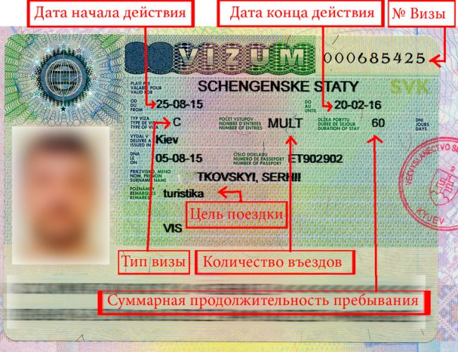 Образец и расшифровка шенгенской визы