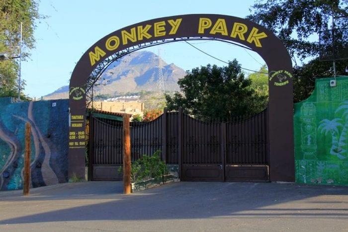 Парк обезьян. Он же монкей парк или лемурятник. Лос-Кристианос.