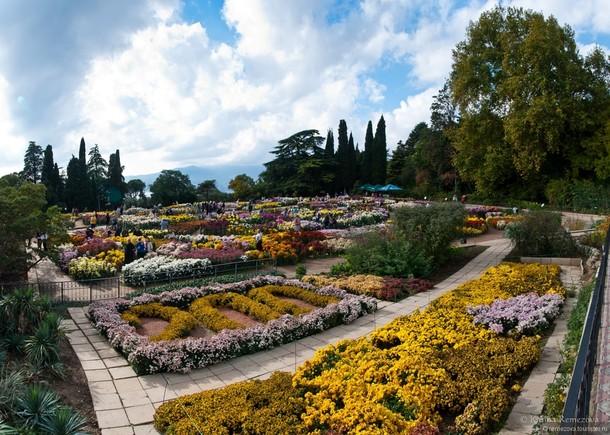 Никитский ботанический сад, Севастополь.