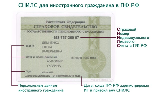 СНИЛС РФ