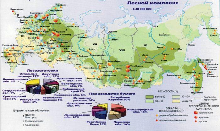 Лесной комплекс России (2017)