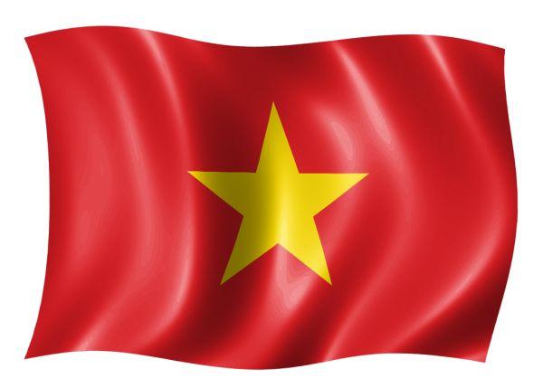 Что можно и нельзя ввозить и вывозить из Вьетнама