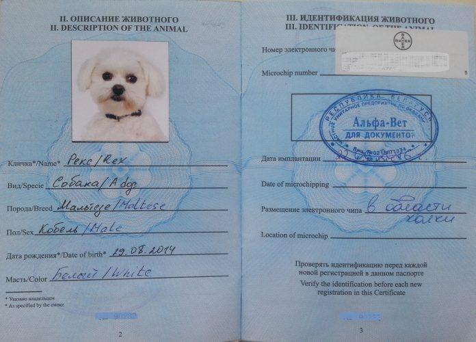 Паспорт собаки