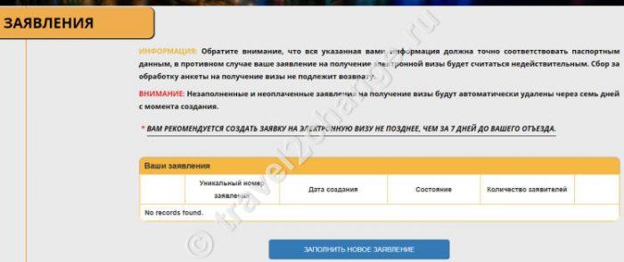 Скриншот окна заявки на получение электронной визы в Египет