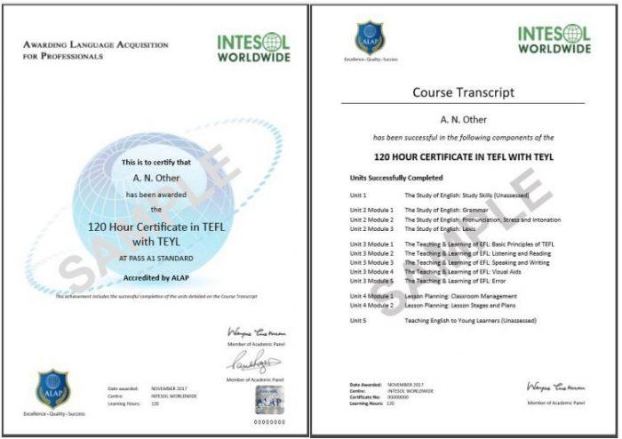 Фото сертификата TEFL