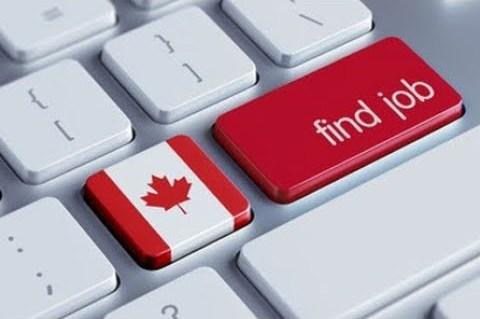 Работа программисту в Канаде
