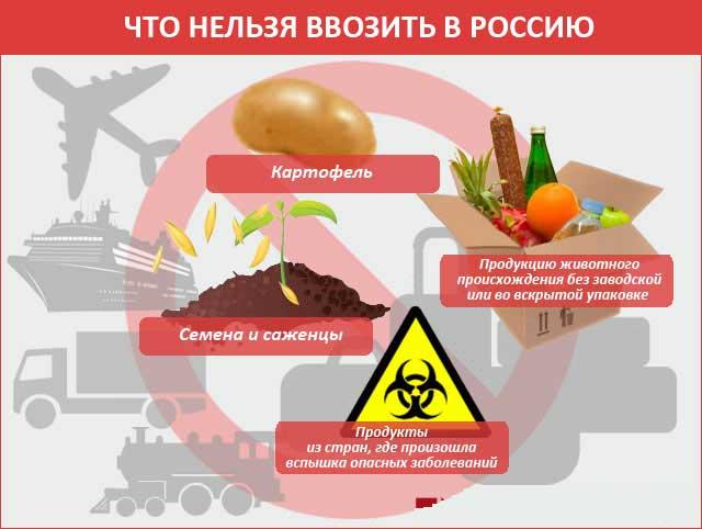 Что нельзя провозить через границу РФ