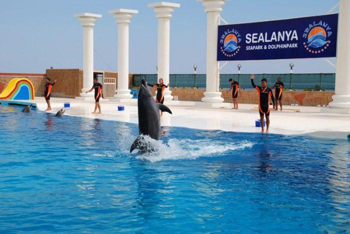 дельфинарий Sealanya Sea Park