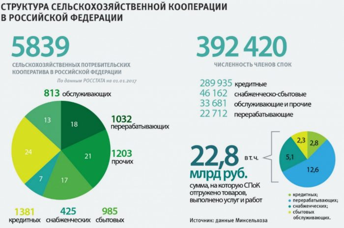 Структура сельскохозяйственной кооперации РФ