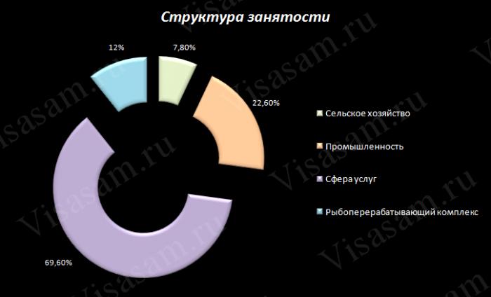 Структура занятости
