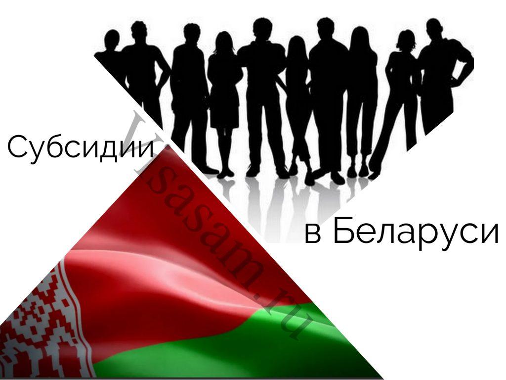 Субсидии в Беларуси