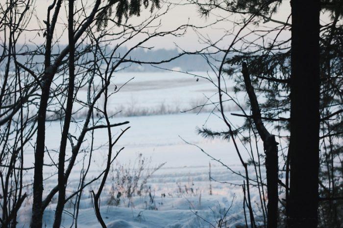 село Комяги
