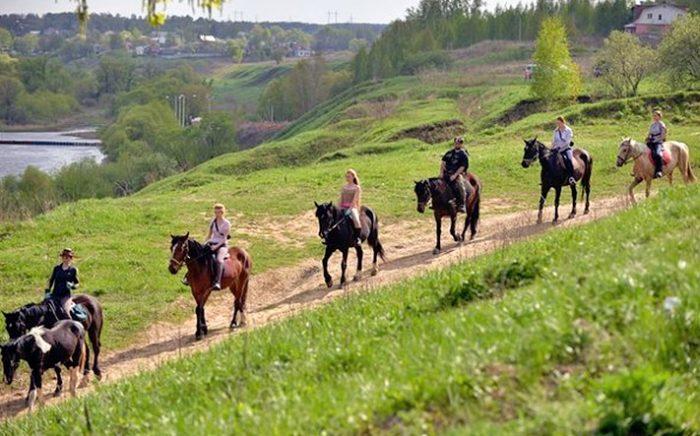 конные прогулки в подмосковье