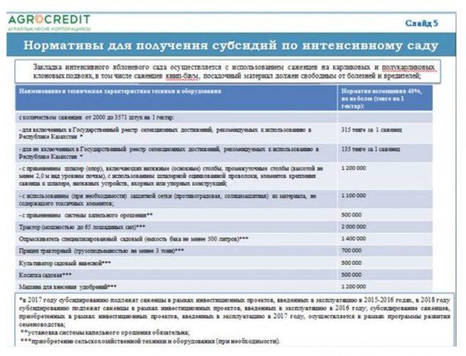Пособие на рождение ребенка и многодетным семьям в Казахстане 2021 году: субсидии на развитие сельского хозяйства