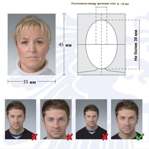 Образец правильного фото на визу в Латвию