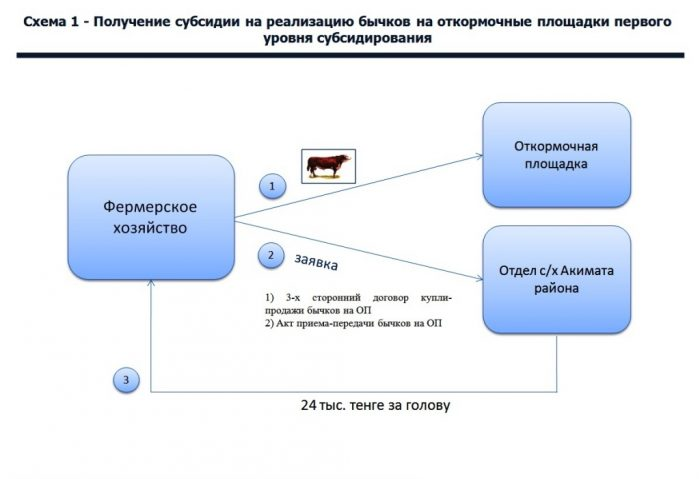 Схема получения субсидии в Казахстане