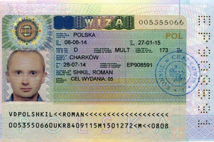 Рабочая виза категории D
