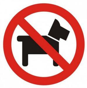 Знак запрета собаки