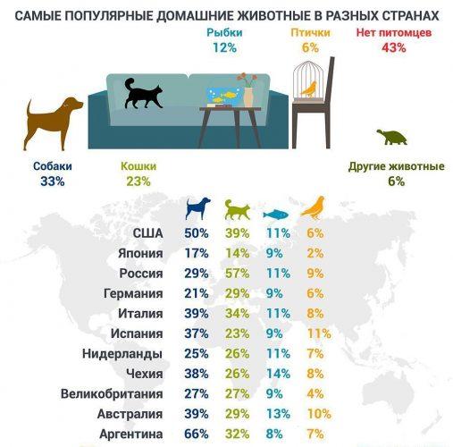 Домашние животные в странах мира