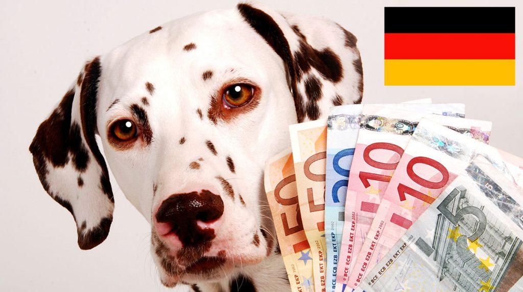 Налог на животных в Германии
