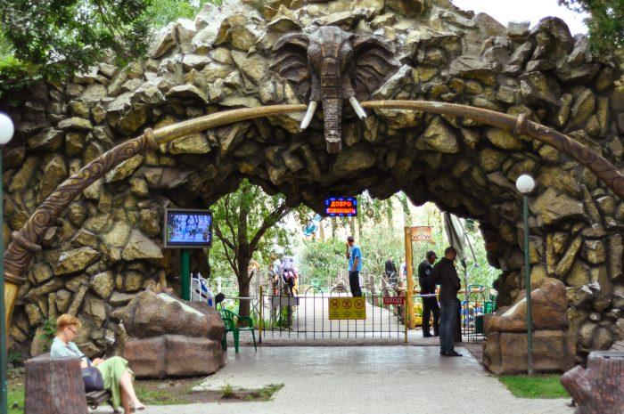 Сафари-парк в парке «Солнечный остров»
