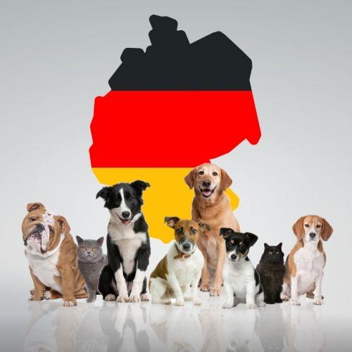 Животные Германии