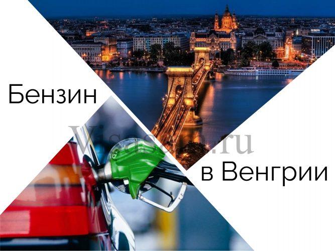 Стоимость и цена бензина в Венгрии : сколько стоит на сегодня 1 литр 95 в евро, правила ПДД, штрафы и платные дороги