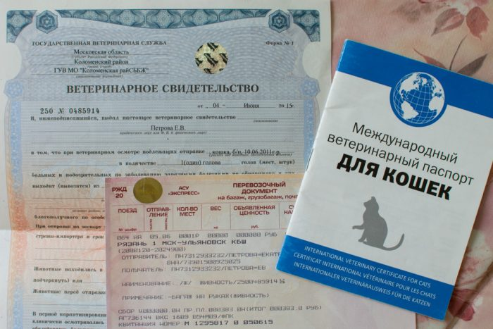 Ветпаспорт и сертификат