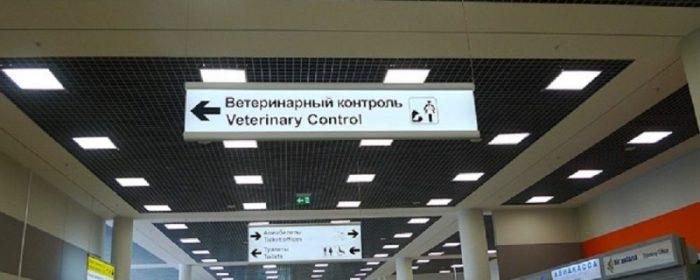 Указатель ветеринарного контроля в аэропорту