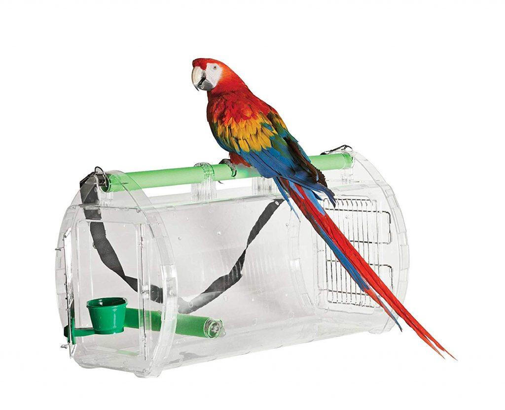 Как перевозить попугая в самолете