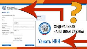 Где и как узнать ИНН иностранного гражданина по паспорту